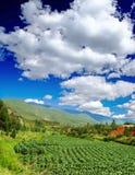 在风景附近的横向lijiang 免版税库存照片