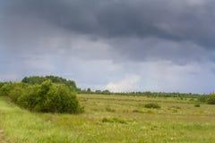 在风暴之前的草甸 库存照片