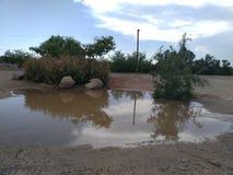 在风暴以后的反射在沙漠 库存图片
