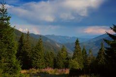 在风暴前的惊人的山风景 库存照片