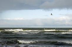 在风暴前的海 图库摄影