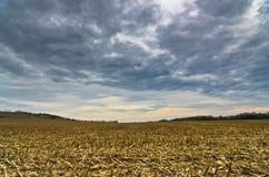 在风暴前的被收获的麦地晚秋天 免版税库存照片