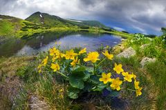 在风暴前的Mountain湖 免版税库存图片