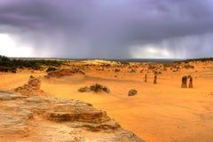 在风暴的沙漠 图库摄影