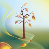 在风的秋天结构树和叶子在轻的晴朗的光芒   免版税图库摄影