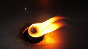 在风的红火灼烧的跳舞在黑暗的背景中 股票视频