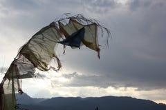 在风的破旧的西藏祷告旗子 免版税库存照片