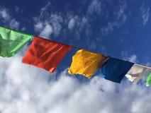 在风蒙古的西藏祷告旗子 库存照片