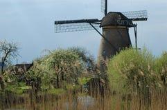 在风车的独特的全景在小孩堤防,荷兰 免版税库存图片