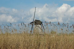 在风车的独特的全景在小孩堤防,荷兰 图库摄影