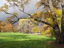 在风暴前的秋天公园 免版税库存照片