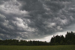 在风暴前的领域 免版税库存图片