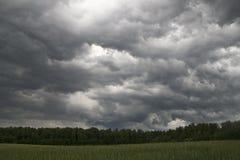 在风暴前的领域 库存图片