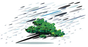 在风暴的抽象树 免版税库存照片