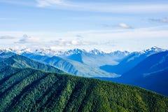 在飓风奥林匹克国家公园里奇的山景  免版税库存照片