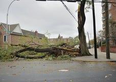在飓风桑迪以后的一条闭合的街道 免版税库存图片
