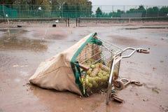 在飓风桑迪以后的河沿公园 免版税库存照片