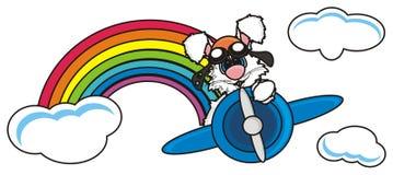 在飞机上的白色兔宝宝飞行 库存图片