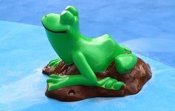在飞溅公园的池蛙 免版税库存图片