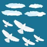 在飞行中鸟群 免版税库存照片