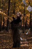 在飞行乐谱用纸的有吸引力的giril无意识而不停地拨弄小提琴和秋天停放背景 免版税库存照片