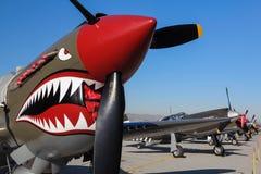 在飞行线的P-40 Warhawk 免版税库存照片