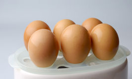 在食品加工器的煮沸的鸡蛋 库存图片