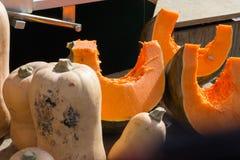 在食物市场上的南瓜菜在秋天月10月 库存图片
