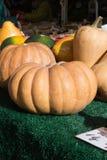 在食物市场上的南瓜菜在秋天月10月 免版税库存图片