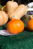 在食物市场上的南瓜菜在秋天月10月 库存照片