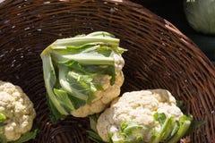 在食物市场上的菜在秋天月10月 免版税库存照片