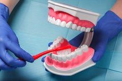 在餐巾的牙齿和牙髓学的仪器 顶视图 库存照片