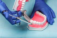 在餐巾的牙齿和牙髓学的仪器 顶视图 免版税库存照片