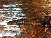 在餐桌上的木样式 免版税库存图片