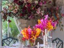 在餐桌上的美丽的兰花花瓶 库存图片
