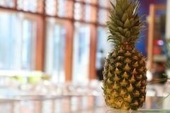 在餐馆桌上的菠萝 库存图片