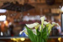 在餐馆的花 图库摄影