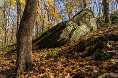 在饥饿的岩石,伊利诺伊的秋天 库存照片