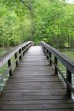 在饥饿的Mother湖,马里,弗吉尼亚,美国的桥梁 免版税库存照片
