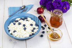 在饮食食物的乳制品 酸奶干酪用新鲜的莓果和蜂蜜 免版税图库摄影