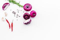 在香料迷迭香,大蒜,在白色背景顶视图空间的辣椒peper中的红洋葱文本的 免版税库存照片