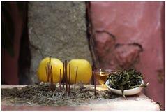 在香港寺庙的菲尼斯Oolong茶 免版税库存图片