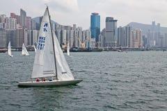在香港港口的赛船会  库存图片