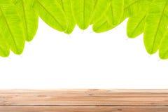 在香蕉叶子框架的木地板在白色背景 免版税库存照片