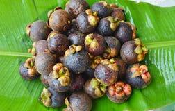 在香蕉叶子的山竹果树夏天热带水果 免版税库存照片