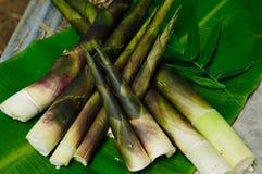 在香蕉叶子的笋 免版税库存图片