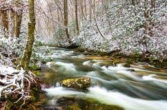 在马丁斯叉子河的冬天雪 免版税库存图片