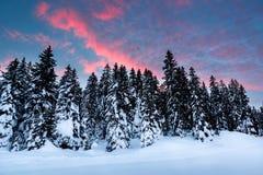 在马东纳-迪坎皮利奥滑雪胜地附近的美好的日出 免版税库存图片