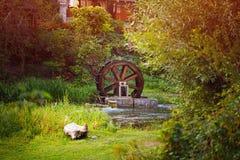 在马农场的老木水车watermill 用青苔盖的老水轮 对磨房的流动的水 老技术 免版税库存照片