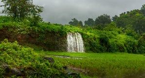 在马哈拉施特拉,印度的瀑布 免版税库存图片
